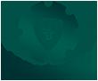 Moneygrator: ваш ключ к платежным сервисам для онлайн-гемблинга